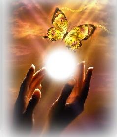 Сенс життя: шлях метелика