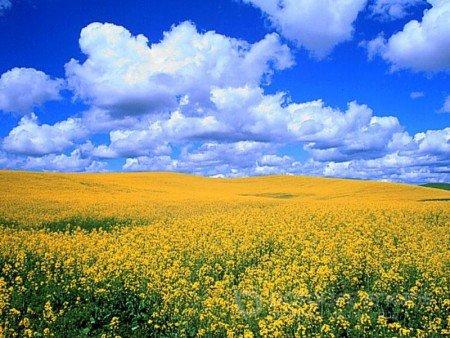 У воскресінні України можемо збагнути значення та ціну тих жертв, які сьогодні кладуть на вівтар Батьківщини найкращі сини й дочки