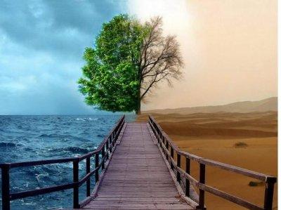 «Жити своїм життям» - ЦЕ   ВІРНІСТЬ ТЕПЕРІШНІЙ   ХВИЛИНІ