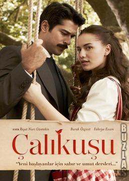 Корольок пташка співоча /Çalıkuşu/ (2013-2014)