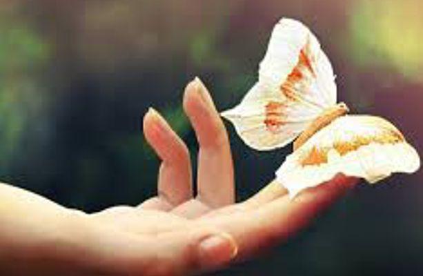 Щастя – дар, який Господь дав нам усім безумовно, як і його рецепти...